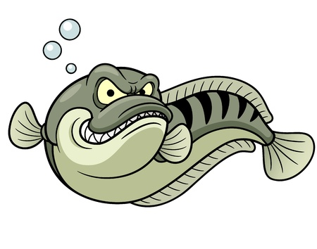 chevron snakehead: Vector illustration of Giant snakehead fish