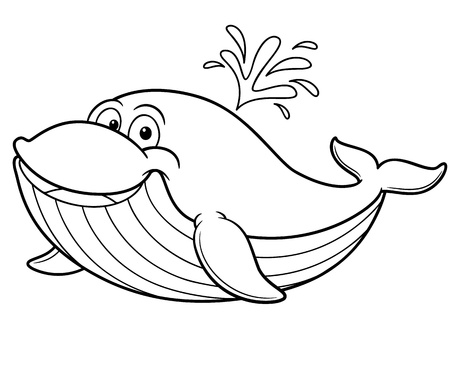 cartoon whale: Vector illustration of cartoon whale - Coloring book