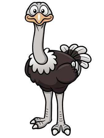 emu: Vector ilustraci�n de dibujos animados de avestruz