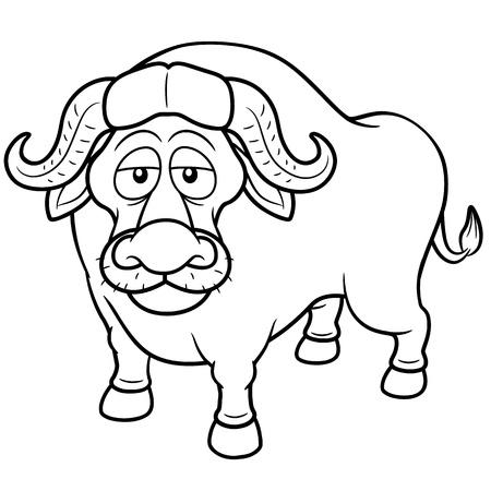 buffalo grass: Vector illustration of African buffalo cartoon - Coloring book Illustration