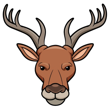 taxidermy: Vector illustration of Deer head Illustration