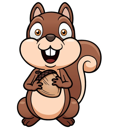 isolated squirrel: Vector illustration of cartoon squirrel