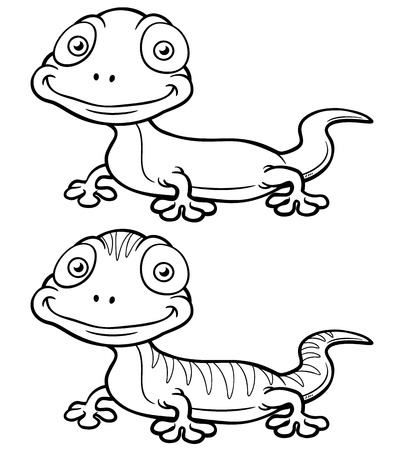 salamander: illustration of Gecko cartoon - Coloring book