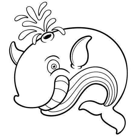 whale: Vector illustration de baleine cartoon - livre de coloriage