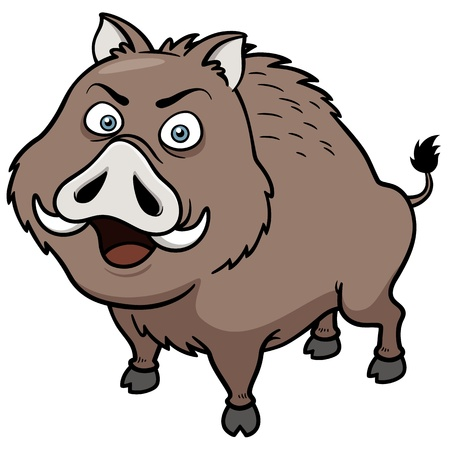 illustration of Boar Vector
