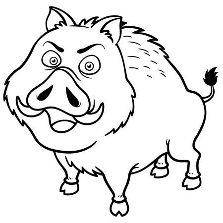 illustration of Boar - Coloring book Vector