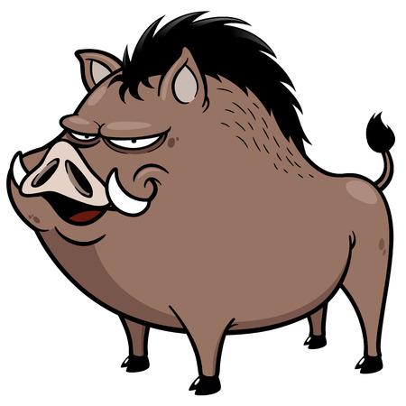 eber: Vektor-Illustration von Wildschwein