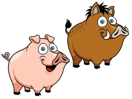 cerdo caricatura: Ilustración vectorial de dibujos animados de cerdo Vectores