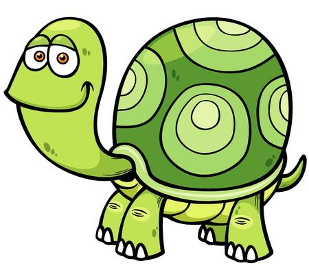 carapace: Vector illustration of Cartoon turtle