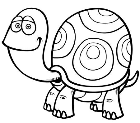 tortuga caricatura: Ilustraci�n vectorial de la tortuga de dibujos animados - Coloring book
