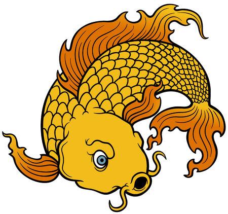 wonderful: vector illustration of Koi fish