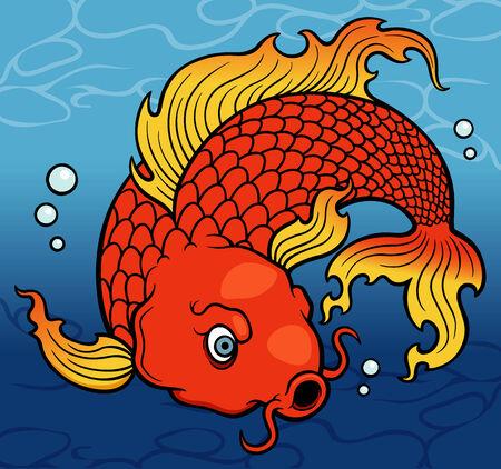 koi fish art: vector illustration of Koi fish