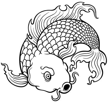koi fish art: vector illustration of Koi fish - Coloring book