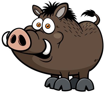 illustration of Wild boar Vector