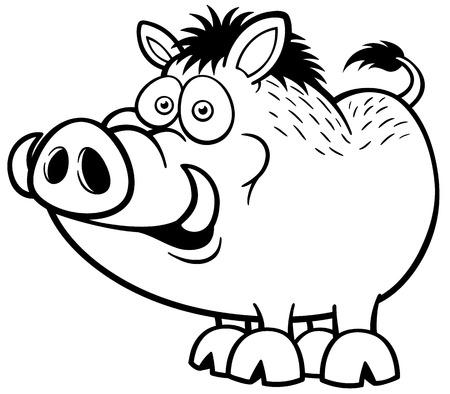 eber: Illustration von Wildschwein - Malbuch