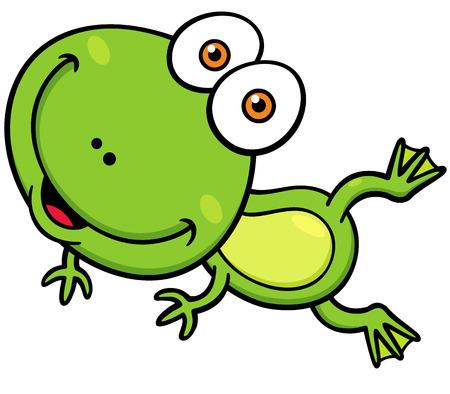 Vector illustration of Cartoon green frog Vector