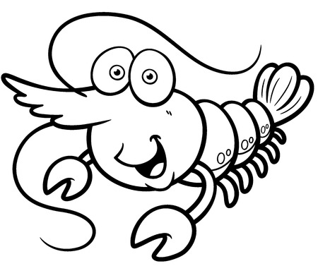 Vector illustration of shrimp - Coloring book Vector