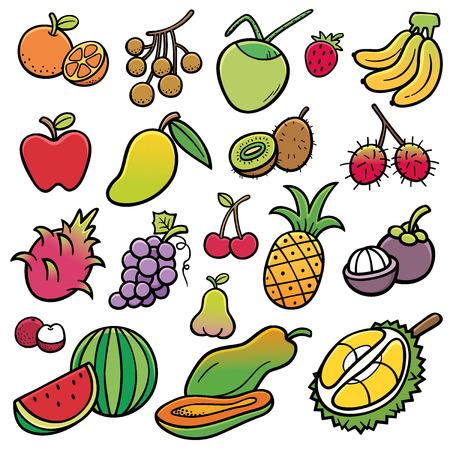rambutan: Vector Illustration of Fruits set