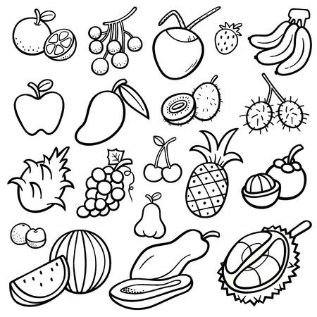 rambutan: Vector Illustration of Fruits set - Coloring book