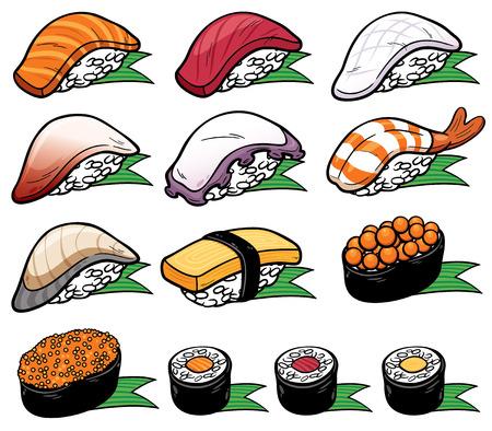 nigiri: Vector Illustration of Sushi set