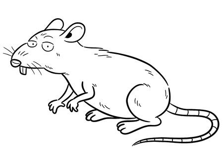 Vector illustration of cartoon Rat - Coloring book Illustration