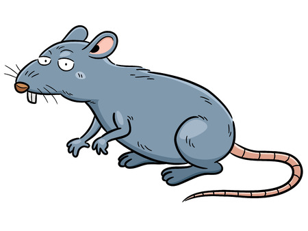 rat cartoon: Ilustración vectorial de rata de dibujos animados
