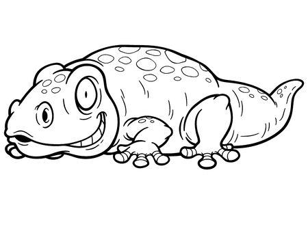 vector illustration: Vector illustration of Gecko cartoon  Coloring book