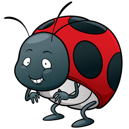 lady bug: Vector illustration of cartoon Lady bug