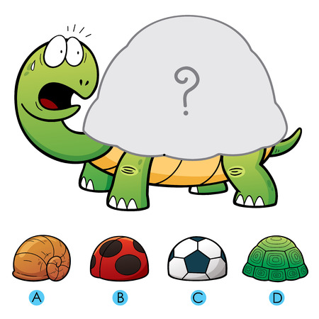 brain game: Vector Illustration of make the choice and connect matching turtle shell