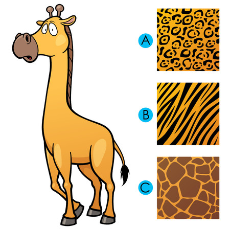 make a choice: Vector Illustration of Education game make the choice skin matching Illustration