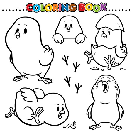 chick: Cartoon Coloring Book - Chick
