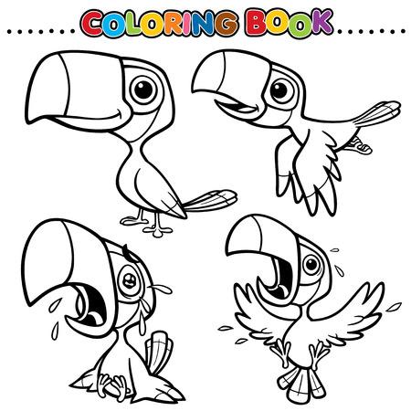 hornbill: Cartoon Coloring Book - Hornbill