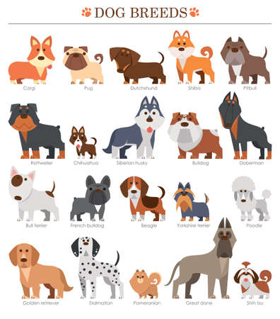 Vector illustration of Cartoon dogs breeds set. Cute dog.