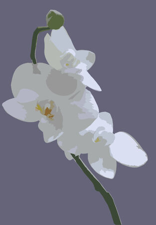 circl: Orchid on a striped . Vector illustration.