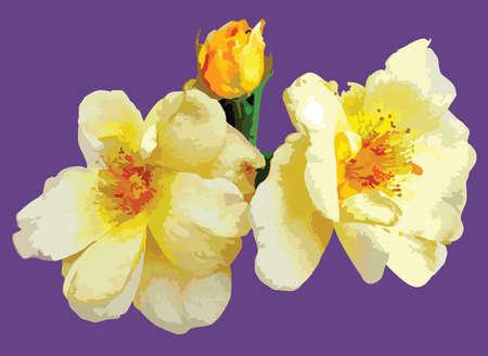 Helle Blumen des Sommers. Vector illustration Standard-Bild - 3778327