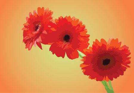 Helle Blumen des Sommers. Vector illustration Standard-Bild - 4428126