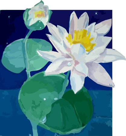 Blossoming lilies in a pond. Illustration