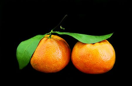 Tangerines on a black background photo