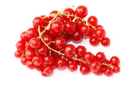 Branch of a red currant on a white background Stock Photo
