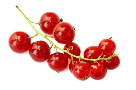 Branch of a red currant on a white background Stock Photo - 8101587