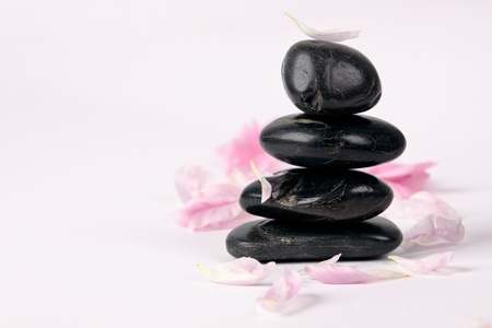 equipoise: Spa stones with rose petals on white background