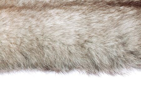 find similar images:    Save to a Lightbox   9660;   Find Similar Images   Share   9660; uxurious mink fur texture close-up background