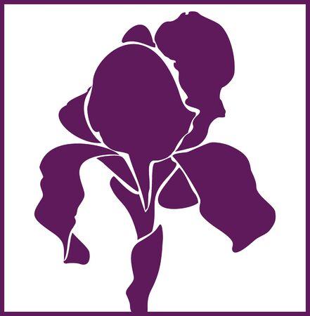 vector iris bloem. Vector illustratie.