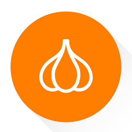 cartoon tomato: garlic icon