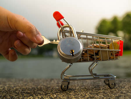 Money coins in shopping cart with lock, saving money concept
