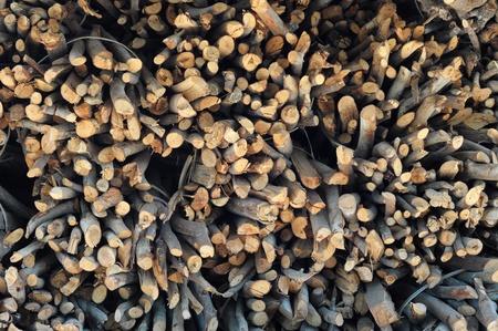 firewood Stock Photo - 13209644