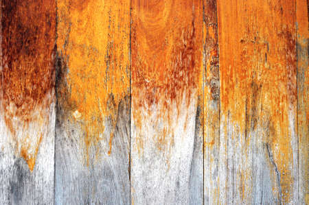 texture of wood Stock Photo - 14301073