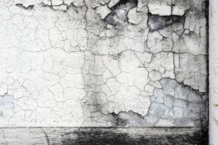 Grunge wall Stock Photo - 14591467