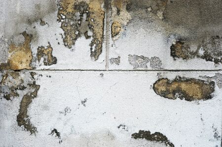 Grunge wall Stock Photo - 14607876