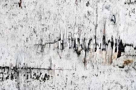 cracked wood photo